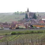 Route de vins